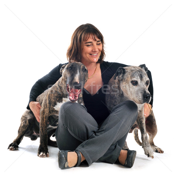 woman and dogs Stock photo © cynoclub