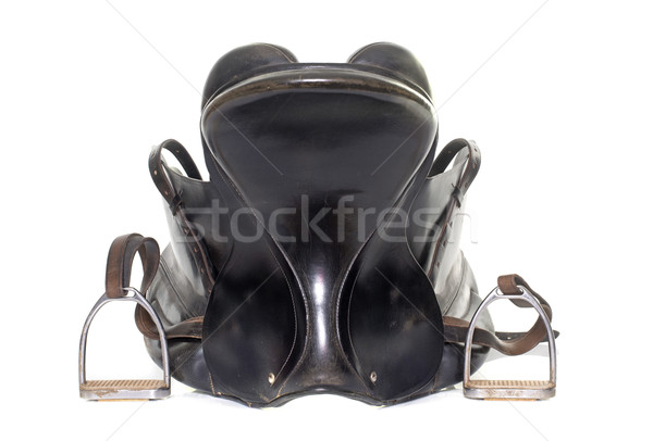 black leather saddle Stock photo © cynoclub