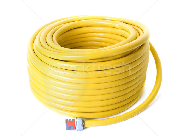 garden hose in studio Stock photo © cynoclub