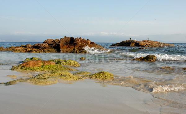 пляж Корсика три птиц рок Сток-фото © cynoclub