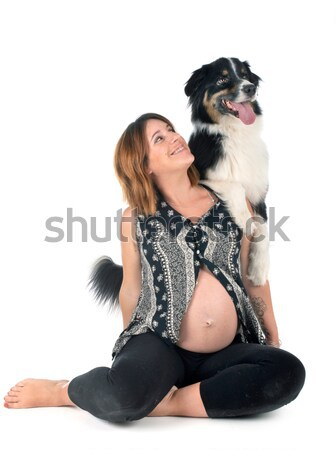 rottweiler and woman Stock photo © cynoclub