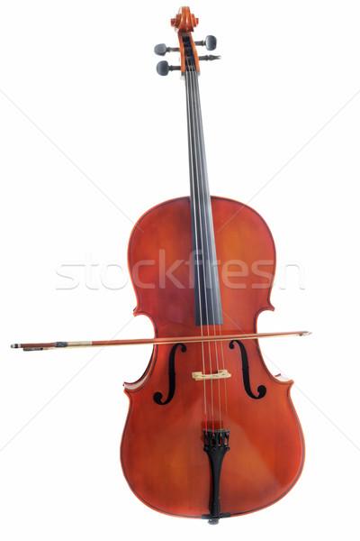 cello Stock photo © cynoclub