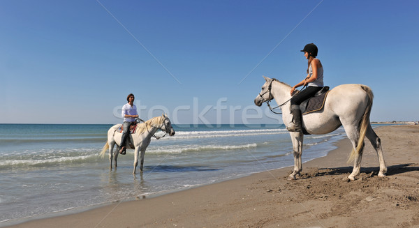 horseback riding in holidays Stock photo © cynoclub