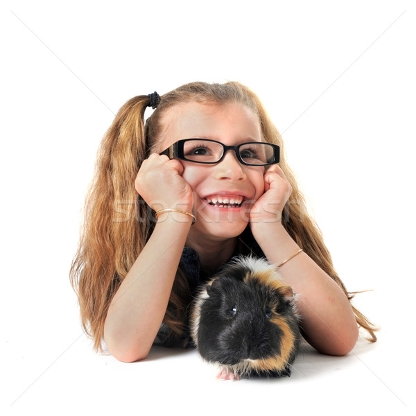 child Guinea pig Stock photo © cynoclub