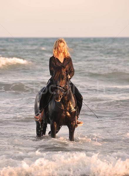 Equitación mujer mar rubio semental nina Foto stock © cynoclub