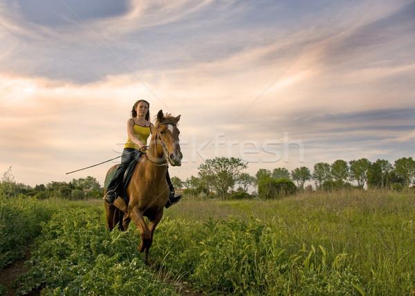 Equitación nina adolescente marrón semental campo Foto stock © cynoclub