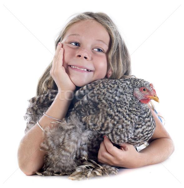 child and chicken Stock photo © cynoclub