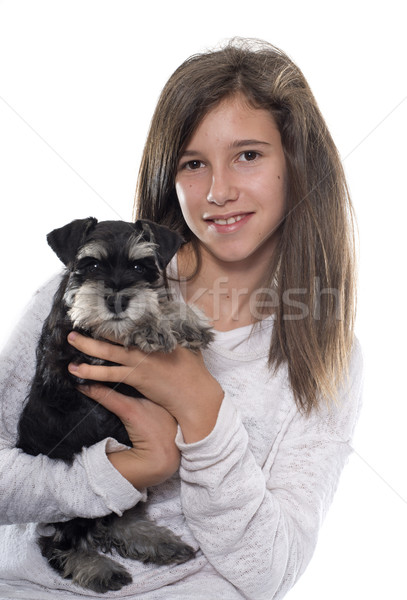 puppy miniature schnauzer and teenager Stock photo © cynoclub