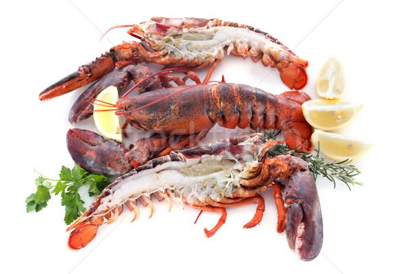 2 食品 動物 料理 クリスマス 新鮮な ストックフォト © cynoclub