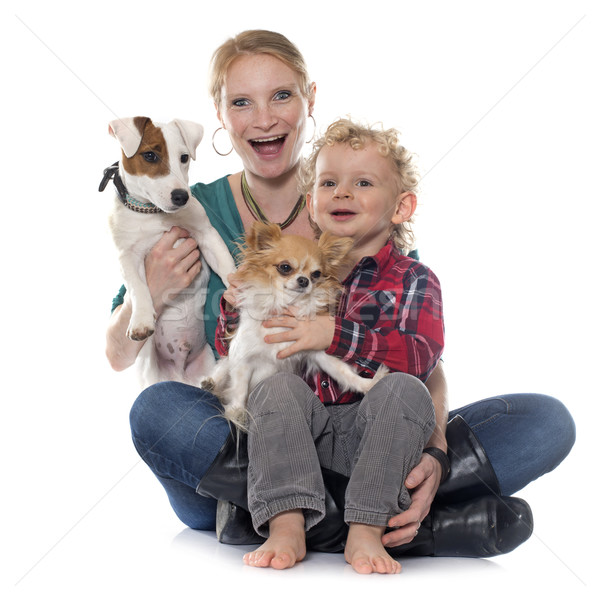 little boy, dogs and mother Stock photo © cynoclub