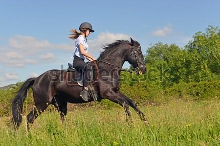 Caballo abajo equitación nina jóvenes negro Foto stock © cynoclub