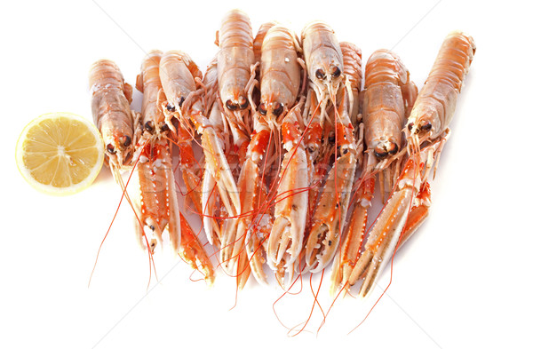 Stock photo: Dublin Bay Prawn