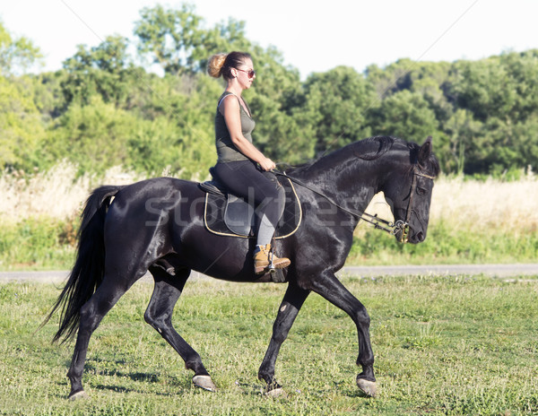 riding girl on black stallion Stock photo © cynoclub
