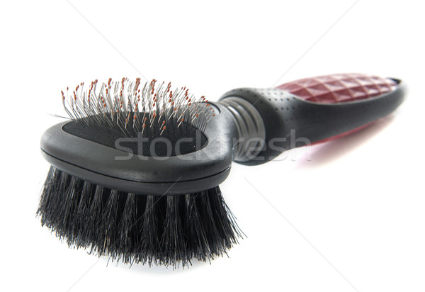 brush for pet Stock photo © cynoclub