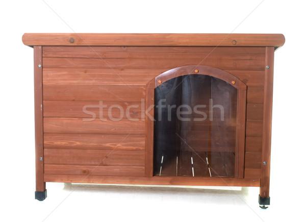 wood dog house Stock photo © cynoclub