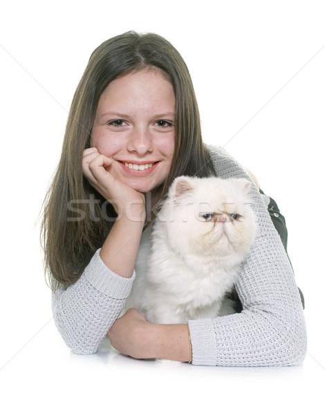 Witte perzische kat tiener vrouw liefde gelukkig Stockfoto © cynoclub