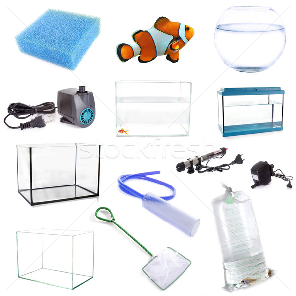 aquarium equipment Stock photo © cynoclub