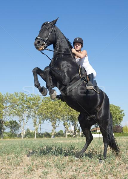 Stockfoto: Jonge · paardrijden · meisje · jong · meisje · zwarte · hengst