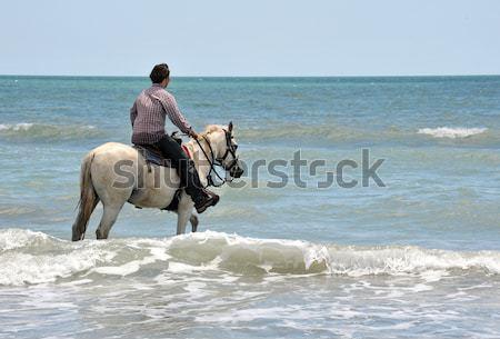 horsewoman on the beach Stock photo © cynoclub