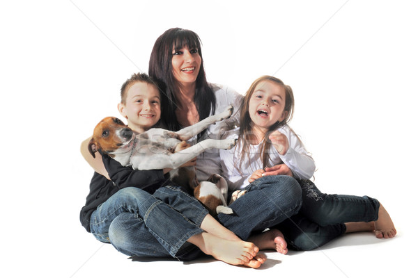 family and  jack russel terrier Stock photo © cynoclub