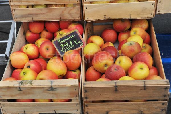 apples Stock photo © cynoclub