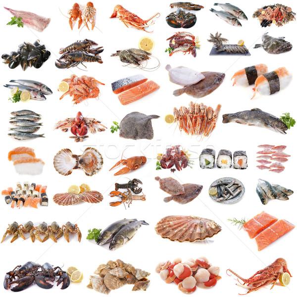 Frutos do mar peixe marisco branco comida grupo Foto stock © cynoclub