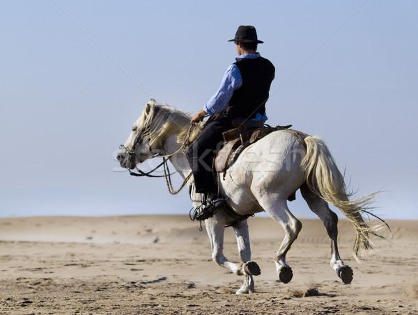 horseman on the beach Stock photo © cynoclub