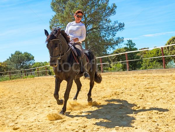 Equitação mulher garanhão branco treinamento escolas Foto stock © cynoclub