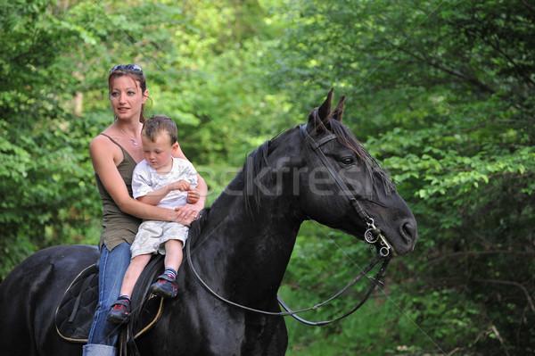 Madre hijo negro caballo pequeño Foto stock © cynoclub