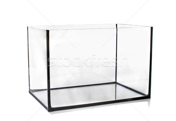 Aquarium leer weiß Glas Tank Stock foto © cynoclub