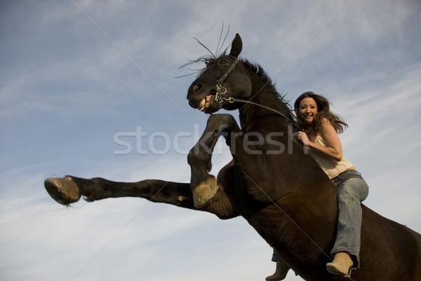 Mutlu kız aygır mavi gökyüzü kadın kız mutlu Stok fotoğraf © cynoclub