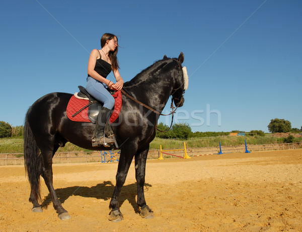 horse and woman in dressage Stock photo © cynoclub