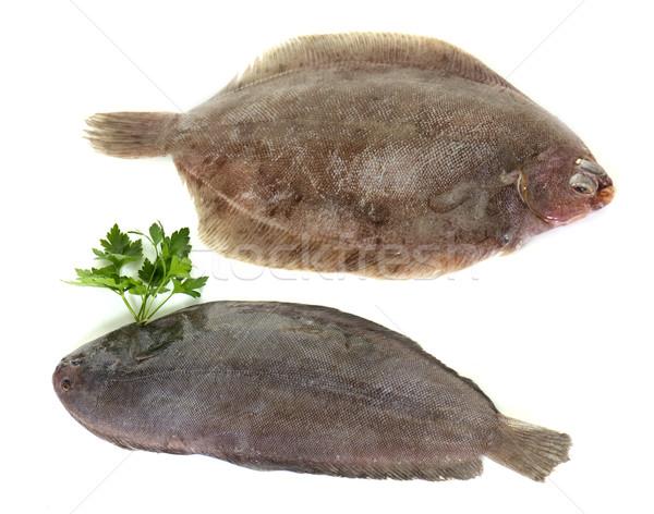Stock photo: sole fish and lemon fish