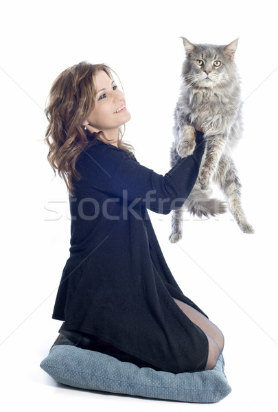 maine coon cat and woman Stock photo © cynoclub