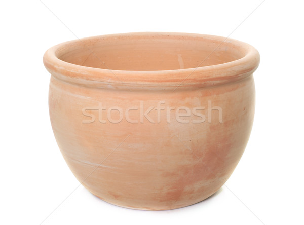 earthenware pot in studio Stock photo © cynoclub
