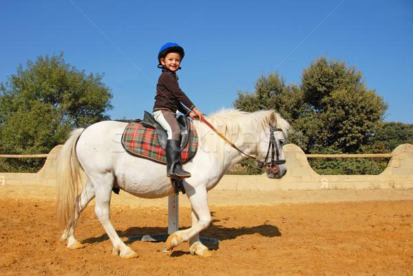 child and pony Stock photo © cynoclub
