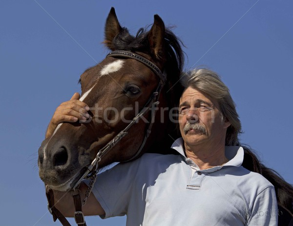 old man and horse Stock photo © cynoclub