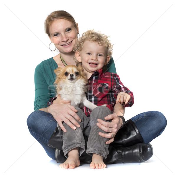 Zdjęcia stock: Mały · chłopca · psa · matka · biały · rodziny