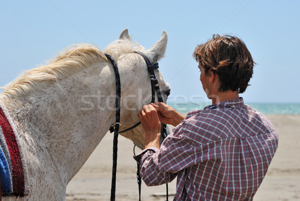 man and horse Stock photo © cynoclub