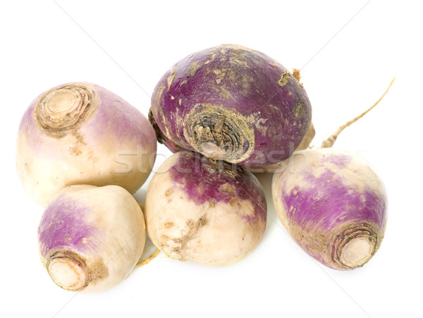turnip in studio Stock photo © cynoclub