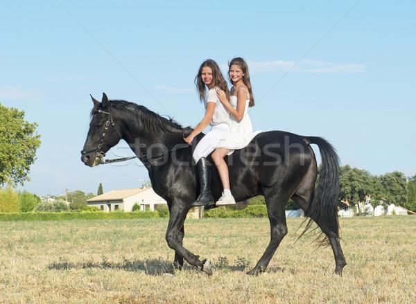 Jonge paardrijden meisjes zwarte hengst veld Stockfoto © cynoclub