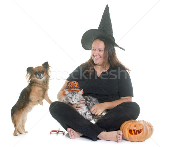 Stock photo: witch and pet