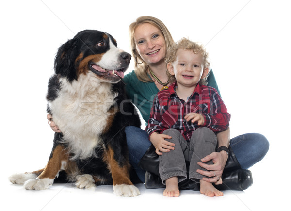 little boy, dog and mother Stock photo © cynoclub