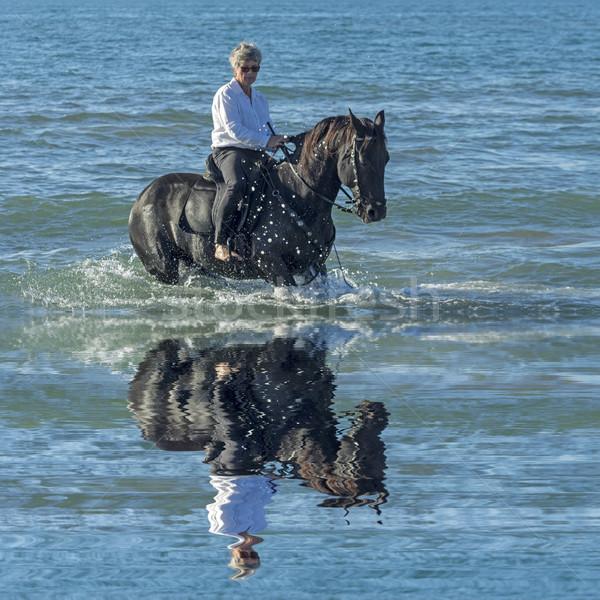 女性 馬 海 乗馬 黒 種馬 ストックフォト © cynoclub