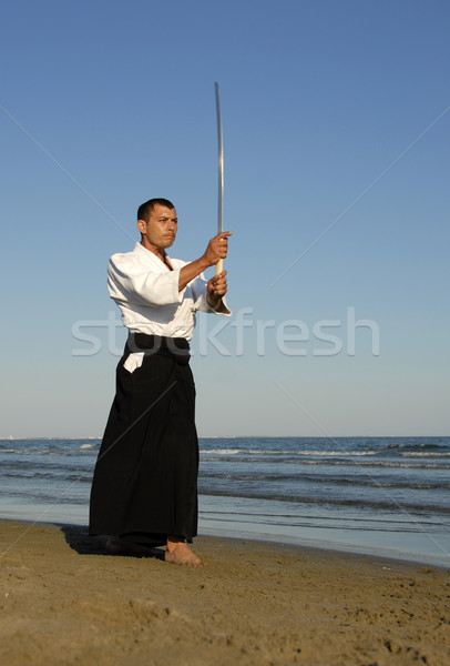 aikido Stock photo © cynoclub