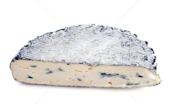 Schimmelkaas witte achtergrond versheid frans zuivelfabriek Stockfoto © cynoclub