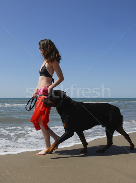 woman and rottweiler on the beach Stock photo © cynoclub