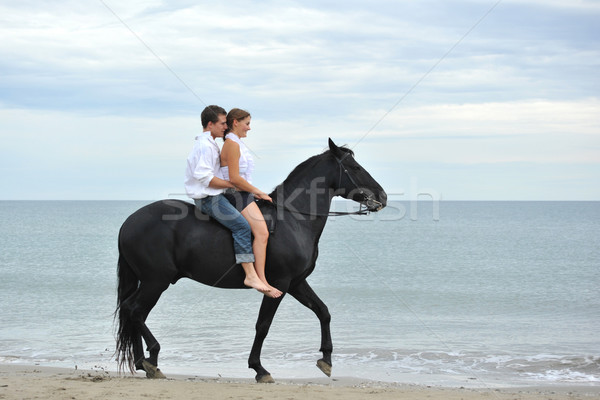 couple and  horse on the beach Stock photo © cynoclub