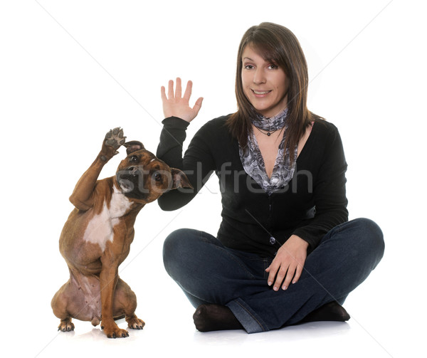 woman and staffordshire bull terrier Stock photo © cynoclub