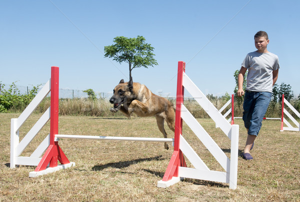 teenager and dog in agility Stock photo © cynoclub